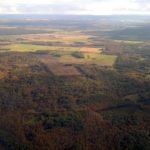 очень зеленая эстония